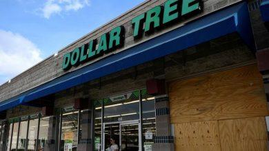 Dollar Tree Gains on Raising Buyback Size by $1.05 Billion