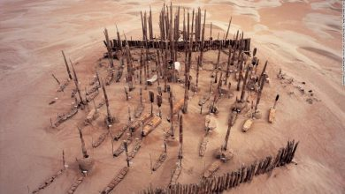 The origins of the Tarim Basin mummies has long puzzled scientists. Now, they have a new theory