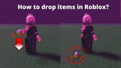 How to drop items in Roblox?
