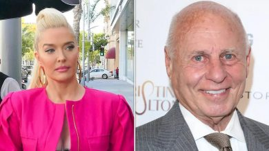 Orphans Owed Millions From Erika Jayne's Husband Tom Girardi Coming After Reality Star's Assets