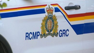 Man found dead on side of Cape Breton highway hit by vehicle: RCMP - Halifax